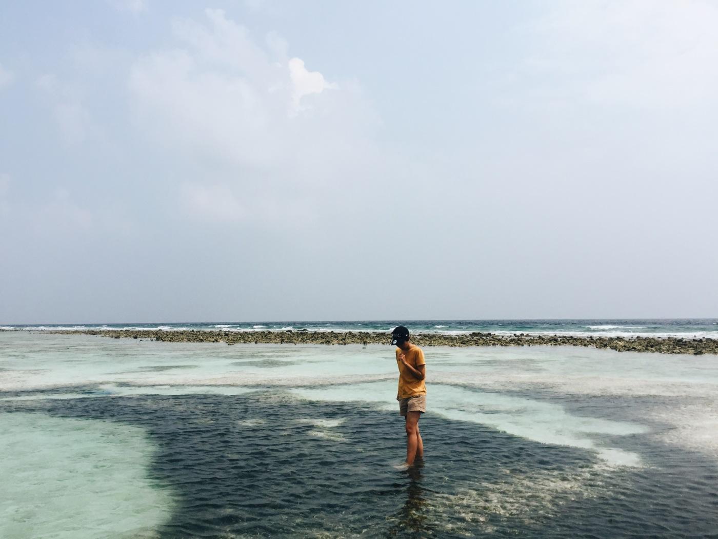 Diving Maldives 3